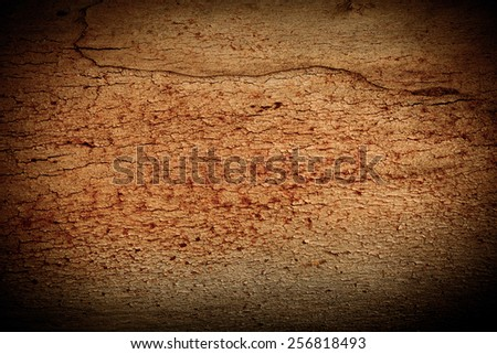 Tree texture abstract as a background add vignette - stock photo