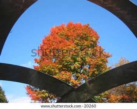 Tree through a statue. - stock photo