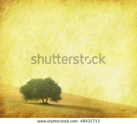 tree with old grunge antique paper texture - stock photo