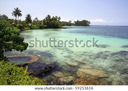 Trees and beach in Upolu island, Samoa - stock photo