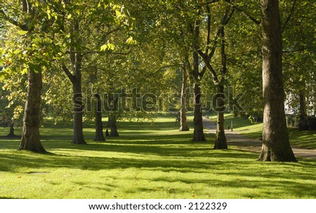 trees and grass - stock photo