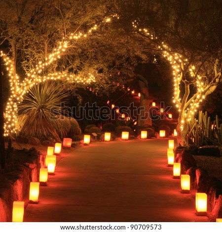 Trees and path lit with holiday lights and luminarias at night - stock photo