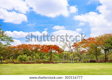 Trees and red flower and grass field with blue sky - stock photo