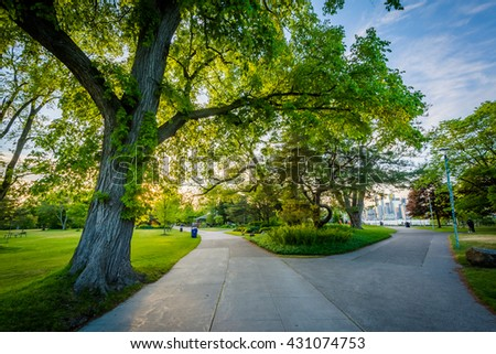 Trees and walkways at Centre Island, in Toronto, Ontario. - stock photo