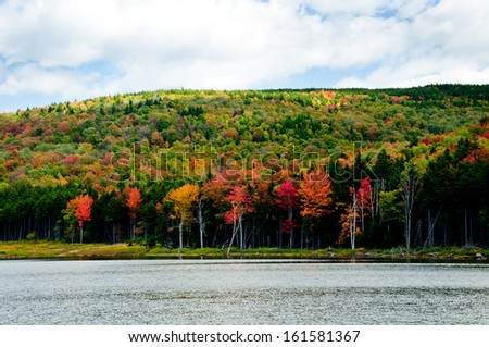 Trees are changing colors along Shaver's Lake in West Virginia. - stock photo