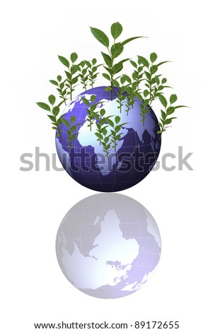 Trees around the world on white background - stock photo