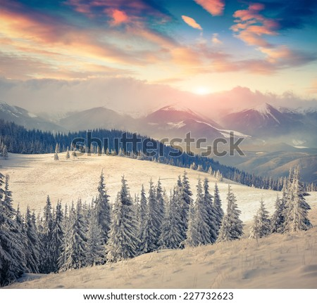 Trees covered with hoarfrost and snow in mountains. Colorful sunrise - stock photo