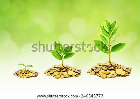 trees growing on coins / business with csr practice - stock photo