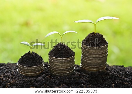 trees growing on coins / csr / sustainable development / economic growth / trees growing on stack of coins - stock photo