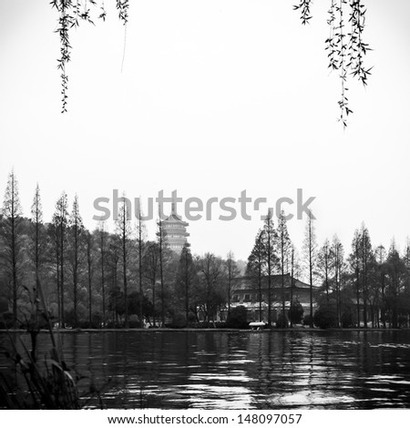 Trees in silhouette - stock photo