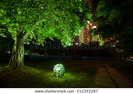 Trees in the park at night - stock photo
