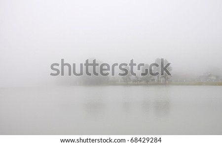 Trees involved in mist by a lake - stock photo