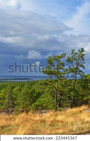 Trees lit with sun before a thunder-storm. Aland, Finland - stock photo