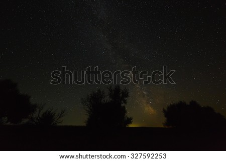 Trees on a background of the night sky and the Milky Way. - stock photo