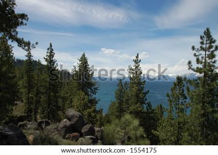 Trees on Southeast Shore of Lake Tahoe - stock photo