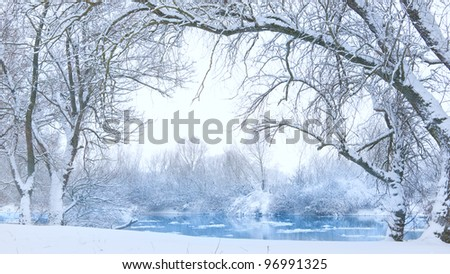 trees on the bank of the river in snowfall - stock photo