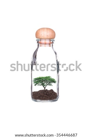 Trees planted in glass bottles isolated on white background. Ecology concept with Green Eco Earth and Trees. Eco friendly. - stock photo
