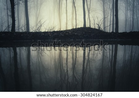 trees reflecting in water in forest - stock photo