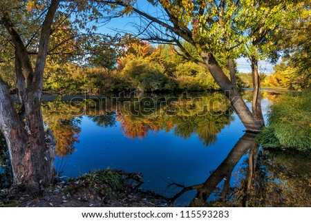 Trees with colored leaves in the Fall along the Boise river - stock photo