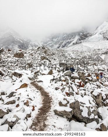 Trek to Everest Base Camp after night snow storm - Nepal, Himalaya - stock photo