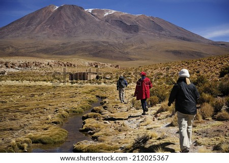 Trekking at altiplano high plateau along the creek, Andes Mountains, Bolivia - stock photo