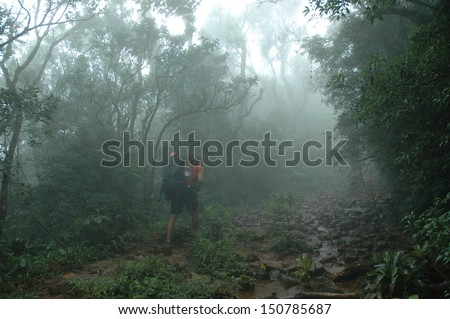 Trekking in rain forest  Serra Geral National Park, mountain range in southern Brazil - stock photo
