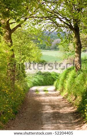 Trial path through forest into farmland - stock photo