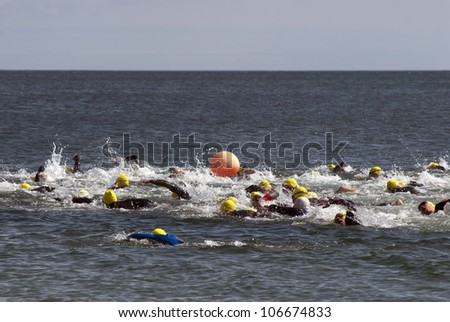 Triathlon swimmers crawling in the blue sea - stock photo
