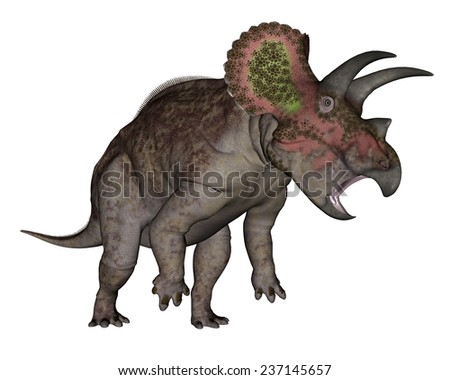 Triceratops dinosaur standing up in white background- 3D render - stock photo