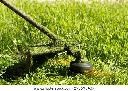 trimmer cuts the grass on the lawn - stock photo