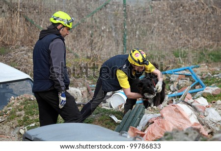 Trino vercellese italy march 10 civil defense during dog handling