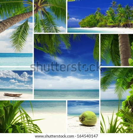 Tropic theme collage composed of different images - stock photo