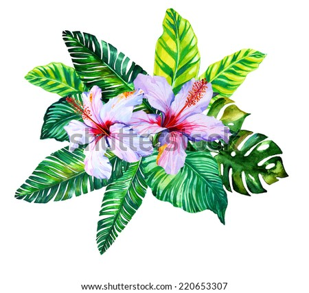 tropical and jungle leaves and hibiscus design. - stock photo