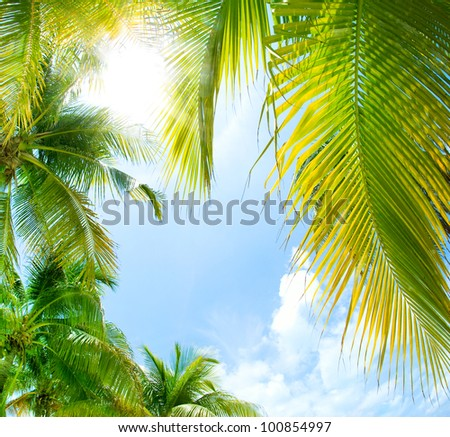 Tropical Background. - stock photo