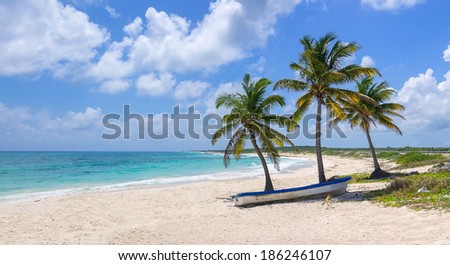Tropical beach and blue ocean - stock photo