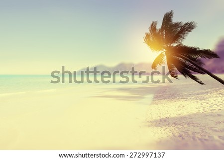 Tropical beach background with palm tree and ocean. Vintage effect. - stock photo