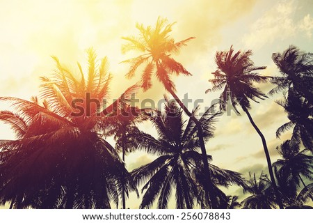 Tropical beach background with palm trees silhouette at sunset. Vintage effect. - stock photo