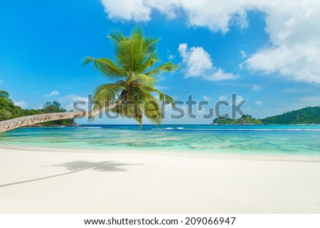Tropical beach Baie Lazare with palm tree at island Mahe, Seychelles - vacation background - stock photo