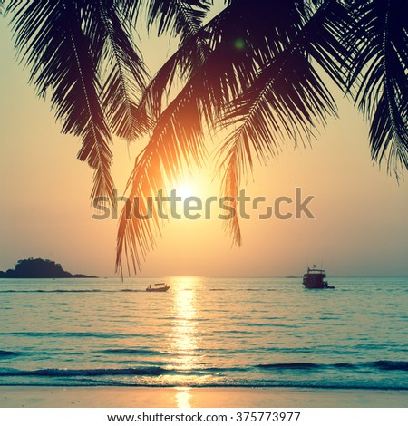 Tropical beach during a beautiful sunset. - stock photo