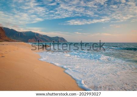 Tropical beach in Hawaii island - stock photo