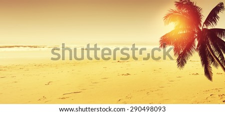 Tropical beach landscape. Coconut palm tree and ocean.  Panoramic view. - stock photo