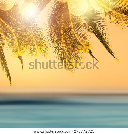 Tropical beach landscape. Design banner background. Coconut palm tree over blurry ocean.  - stock photo