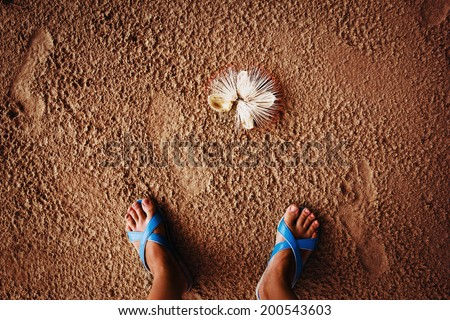 Tropical beach. Suntanned legs in flip-flops. Holiday and vacation. A Barringtonia flower lies on sand. - stock photo
