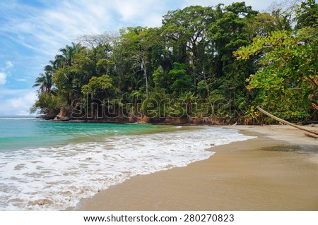 Tropical beach with beautiful vegetation, Punta Uva, Puerto Viejo, Costa Rica - stock photo