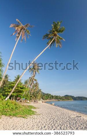 Tropical beach with blue sky. - stock photo