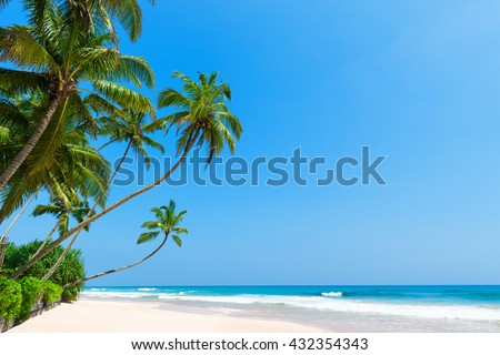 Tropical beach with coconut palm trees. Idyllic clean ocean white sand and clear blue sky and sunny summer day - stock photo