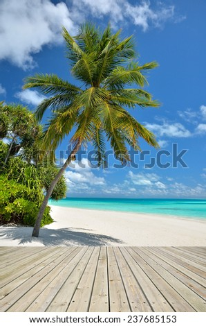 Tropical beach with empty wooden platform - stock photo