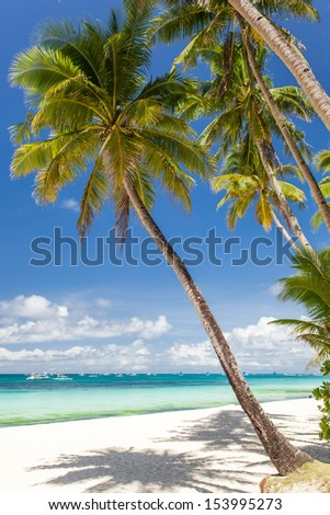 Tropical beach with palm and white sand, Philippines, Boracay Island - stock photo
