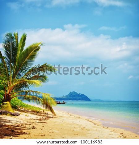 tropical beach with palm, Andaman Sea, Thailand - stock photo