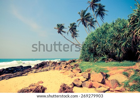 Tropical beach with palm in Sri Lanka. Vintage effect - stock photo